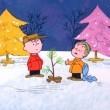 It's Christmastime Again, Charlie Brown Resimleri