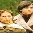 Harold Ve Maude Resimleri