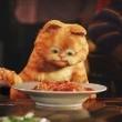 Garfield 2 Resimleri 12