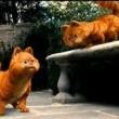 Garfield 2 Resimleri 23