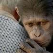 Maymunlar Cehennemi: Başlangıç Resimleri 16