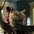 Kediler ve Köpekler Kitty Galore'un İntikamı Resimleri 7